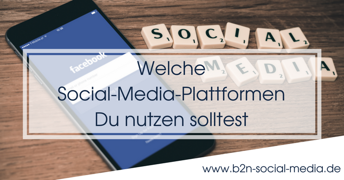 Welche Social-Media-Plattformen Du nutzen solltest