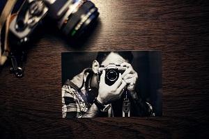 Kostenlose Bilder: SplitShire
