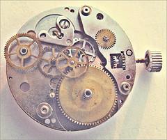 Was Sie in Social Media automatisieren können - und was nicht